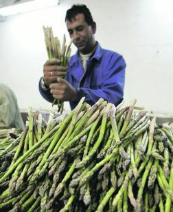 Campaña de difusión del convenio de manipulado de frutas yhortalizas.