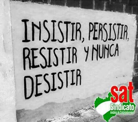 Resistir, persistir..
