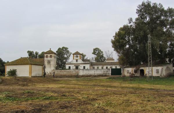 Ocupación del Cortijo de Gambogaz. (Jueves 9 de agosto a las 11horas).