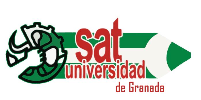 Investigando con derechos: Programa del Sindicato Andaluz de Trabajadores/as para las elecciones sindicales del personal docente e Investigador de la Universidad deGranada