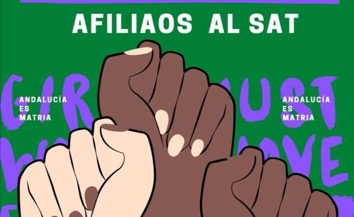 SAT Universidad (Granada) mujeres docentes e investigadoras: campaña deafiliación.