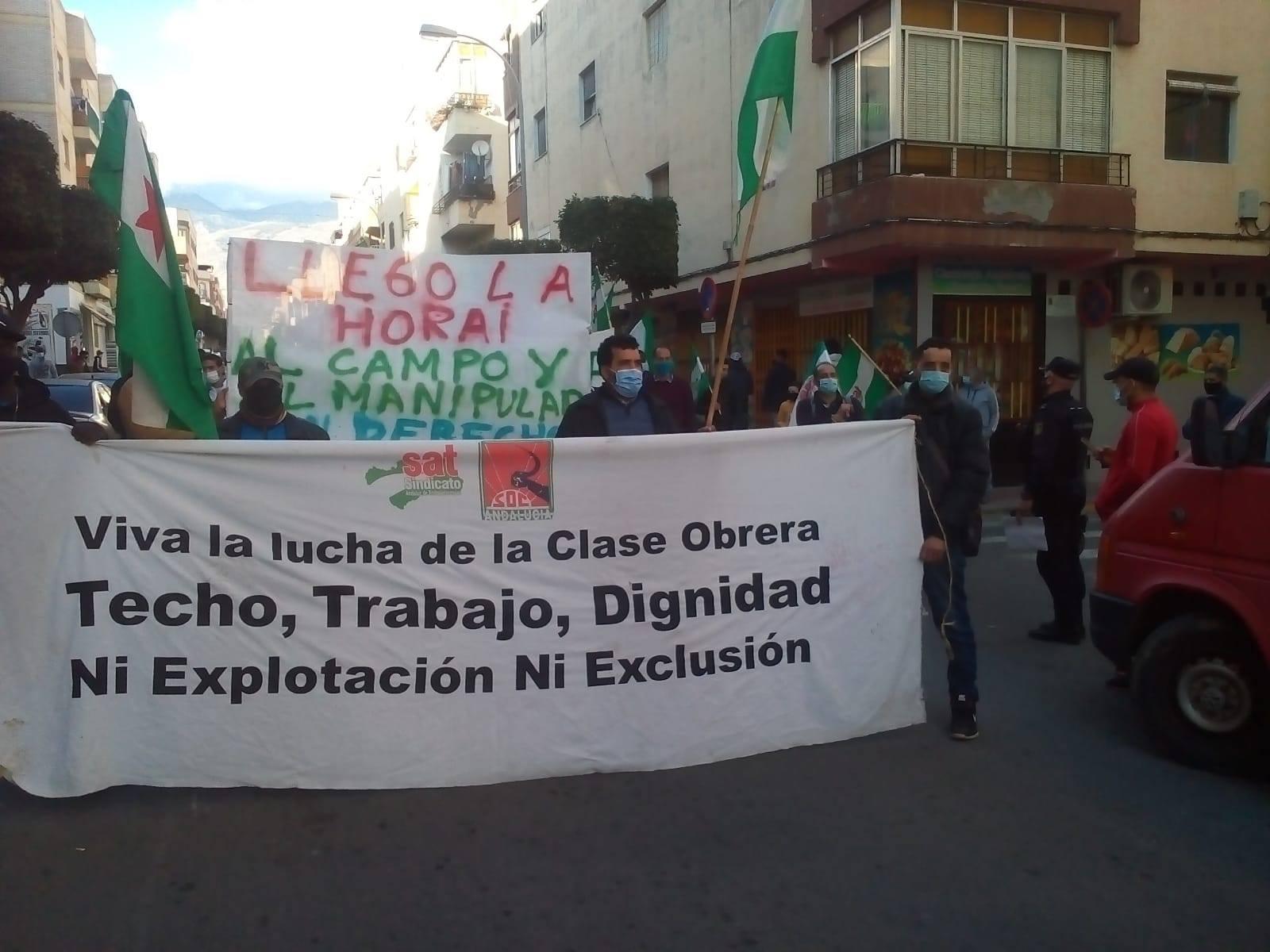 Lucha Almería